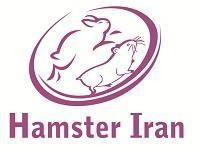 همستر ایران مرکز تخصصی همستر , خوکچه هندی و خرگوش در ایران